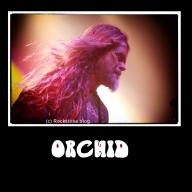 Orchid IGR.jpg